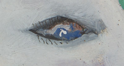 close up view of the horse's eye