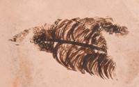 Artist Hallmark (a feather) - Helen Naha (1922-1993) Feather Woman