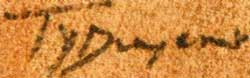 Picture of Ty Duwyenie signature